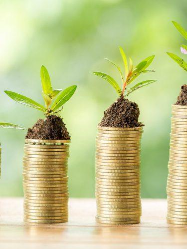 ¿Cómo y por qué invertir tu dinero?